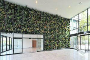 hall entree spacieux avec mur vegetalise